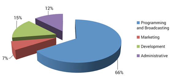 2013 Functional Expenses Pie Chart